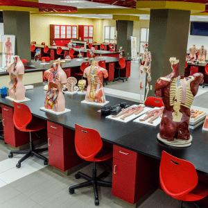 laminate casework laboratory