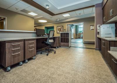 custom medical cabinets